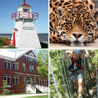 Visit nearby Upper Clements Theme Park, Oaklawn Zoo, MacDonald Museum, and Upper Clements Adventure Park